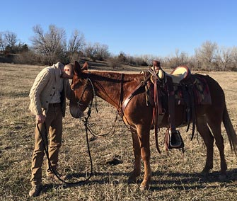 Festus – 12 year old horse (john) mule